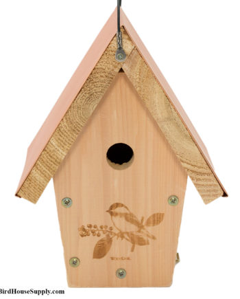 Woodlink Coppertop Chickadee and House