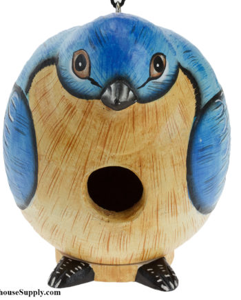 Songbird Essentials Bluebird Gord-O Birdhouse