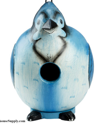 Songbird Essentials Blue Jay Gord-O Birdhouse