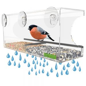 Yardly Noticed Clear Window Bird Feeder with Suction Cups and Removable Tray