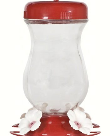 24 oz Top Fill Glass Hummingbird Feeder